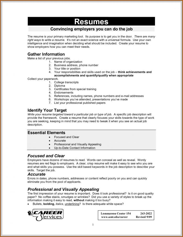 Attractive Resume Format Pdf