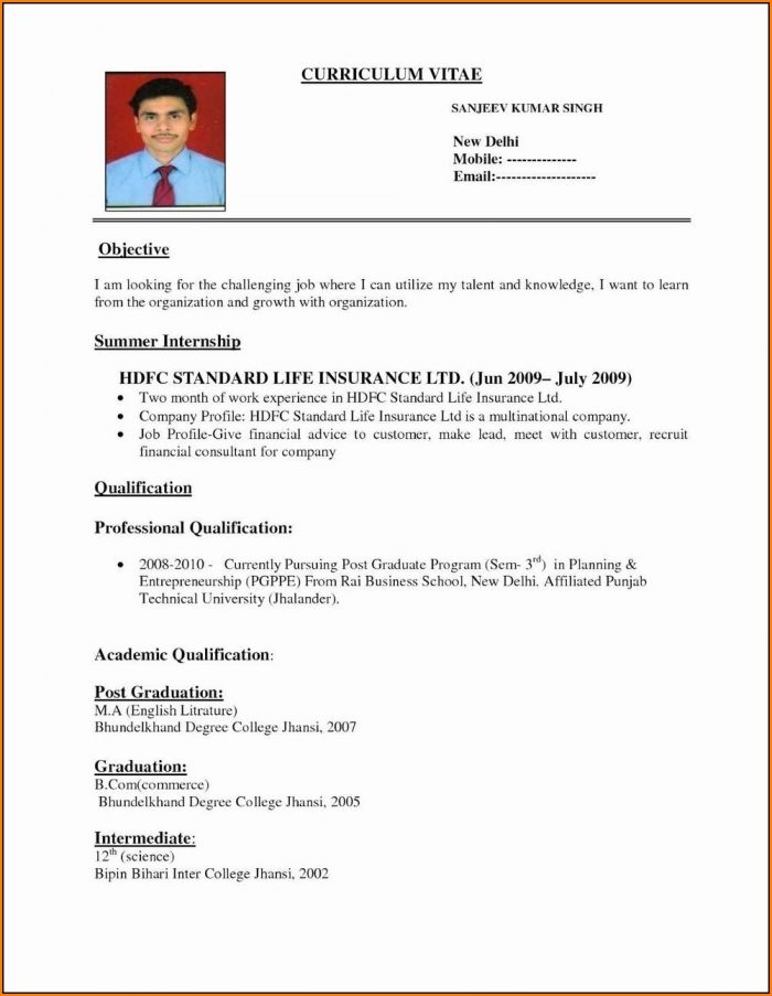 Attractive Resume Format Pdf Download