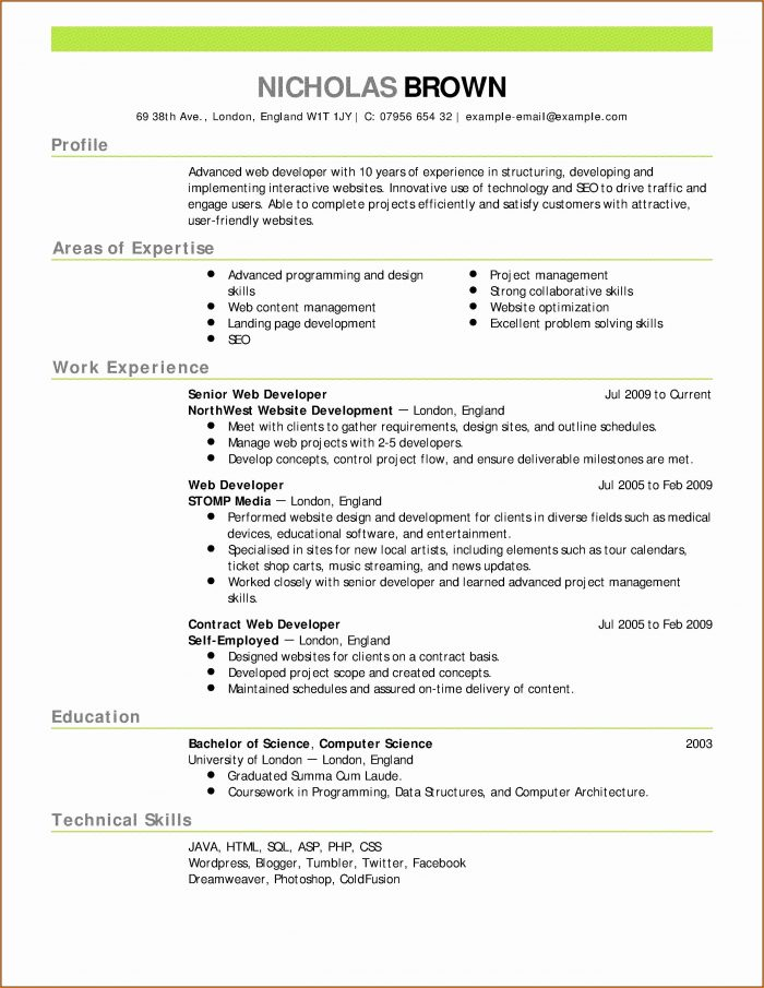 Direct Support Professional Resume Template