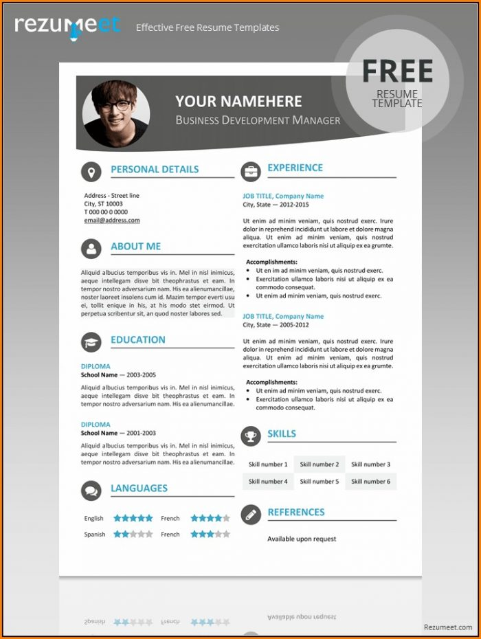 Editable Resume Template Pdf
