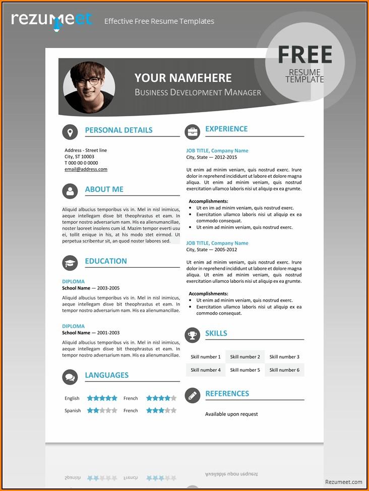 Editable Resume Template Pdf