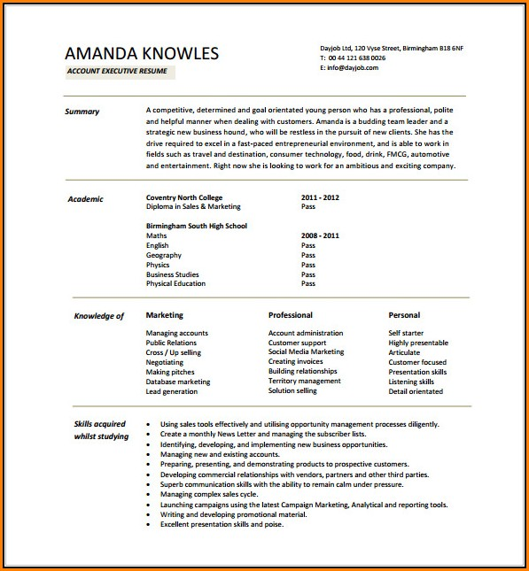 Executive Resume Template Word Free Download