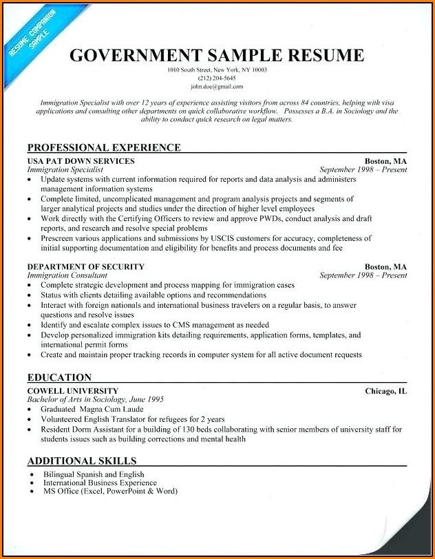 Federal Resume Builder Example