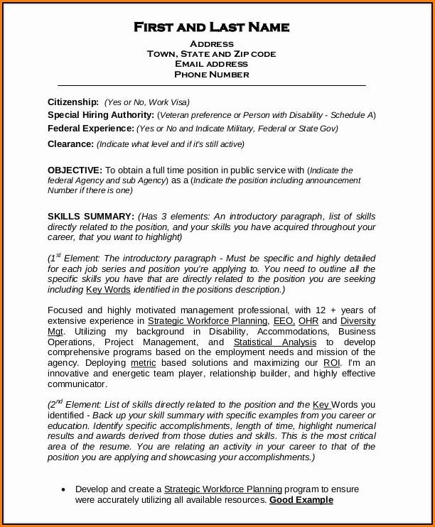 Federal Resume Builder Template