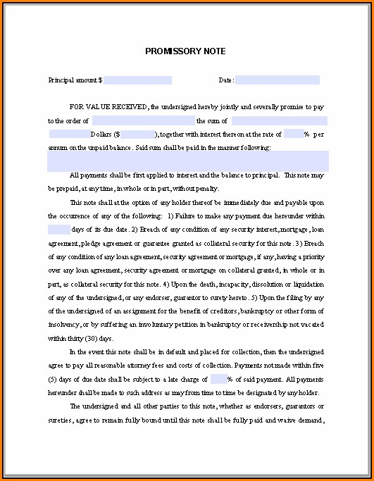 Free Fillable Promissory Note Template