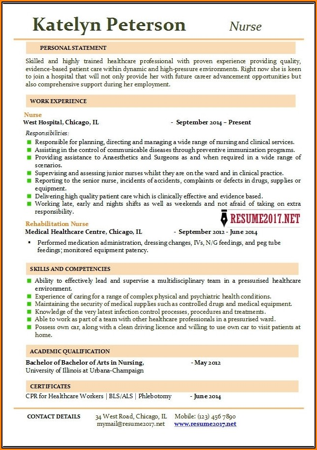 Nursing Resume Templates 2017