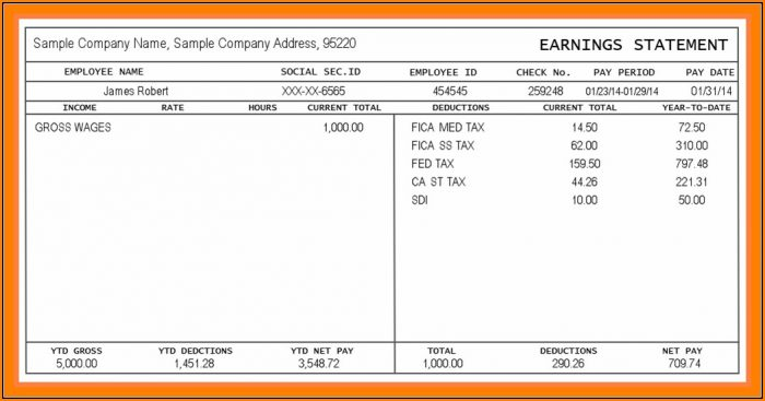 Blank Pay Stubs Template Free