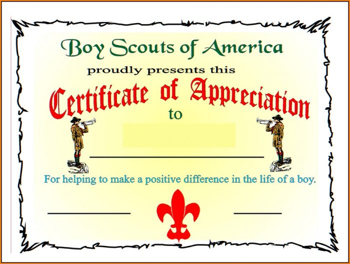 Boy Scout Certificate Of Appreciation Templates