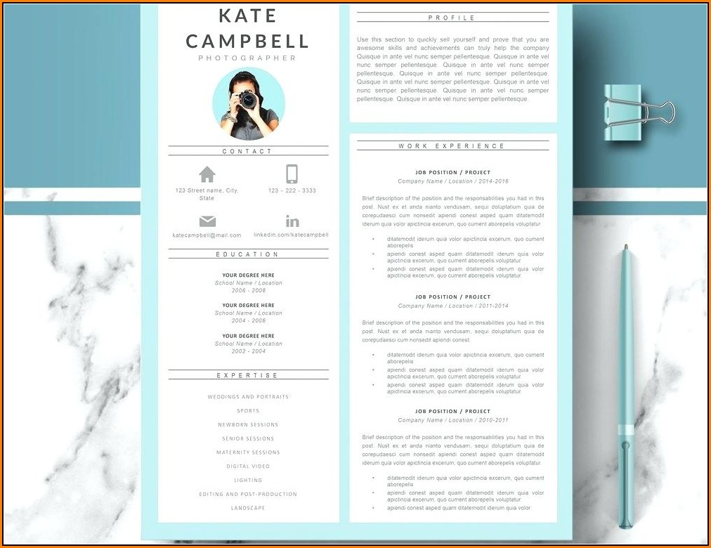 Contemporary Resume Templates Free Word