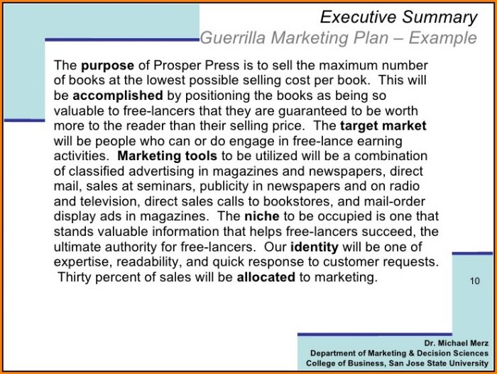 Guerrilla Marketing Plan Template