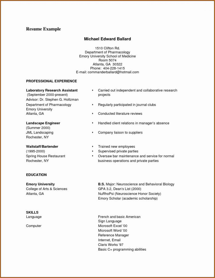 Professional Resume Template Pdf