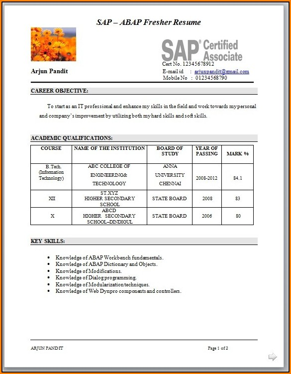Resume Format For Sap Fico Freshers