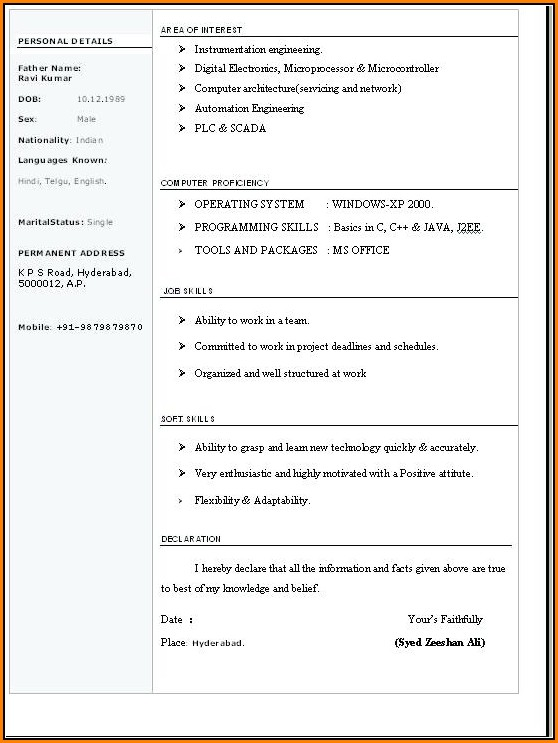 Resume Format In Word Free Download