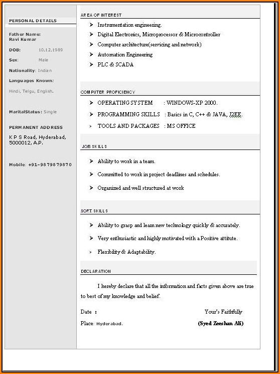 Resume Format Word File Download Free