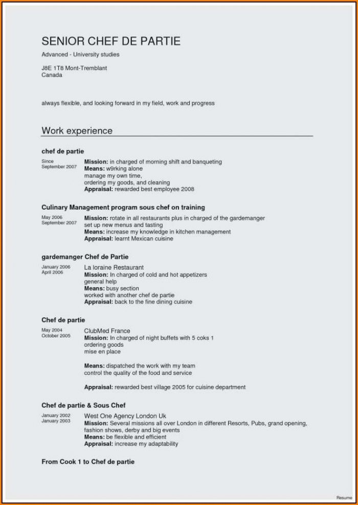 Resume Sample For Chef De Partie