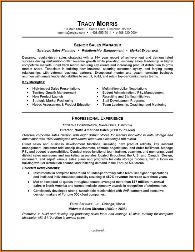 Resume Template For Salesman