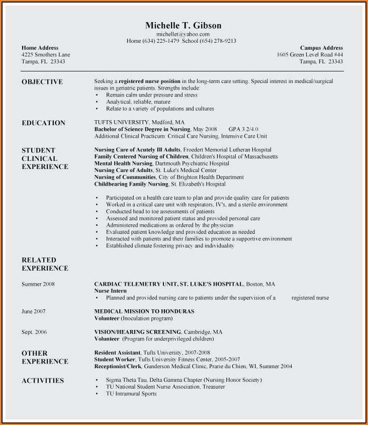 Resume Templates Rn New Grad