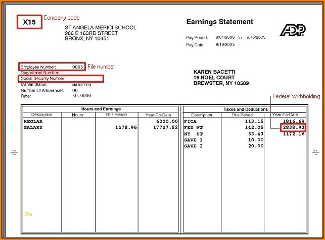 Fillable Blank Pay Stubs Template