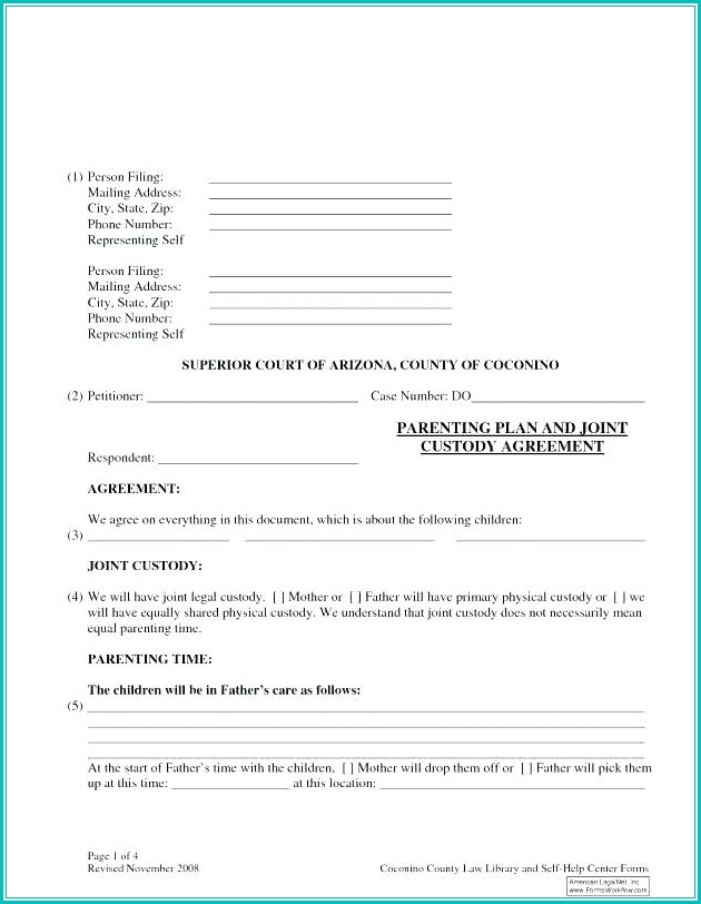 Temporary Child Custody Form Florida