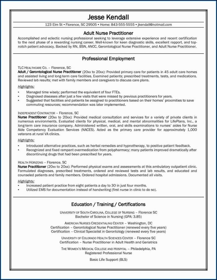 Best Resume Templates Nursing