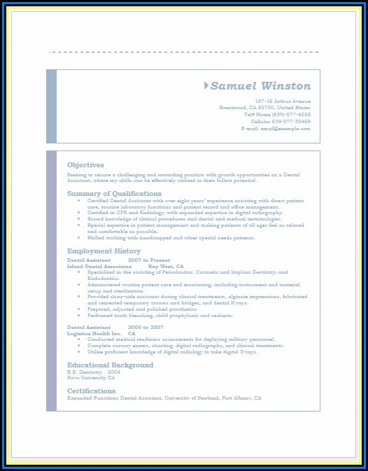 Dental Resume Templates Word