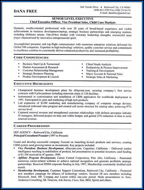 Executive Level Resume Templates Free