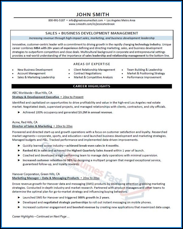 Executive Resume Examples 2017