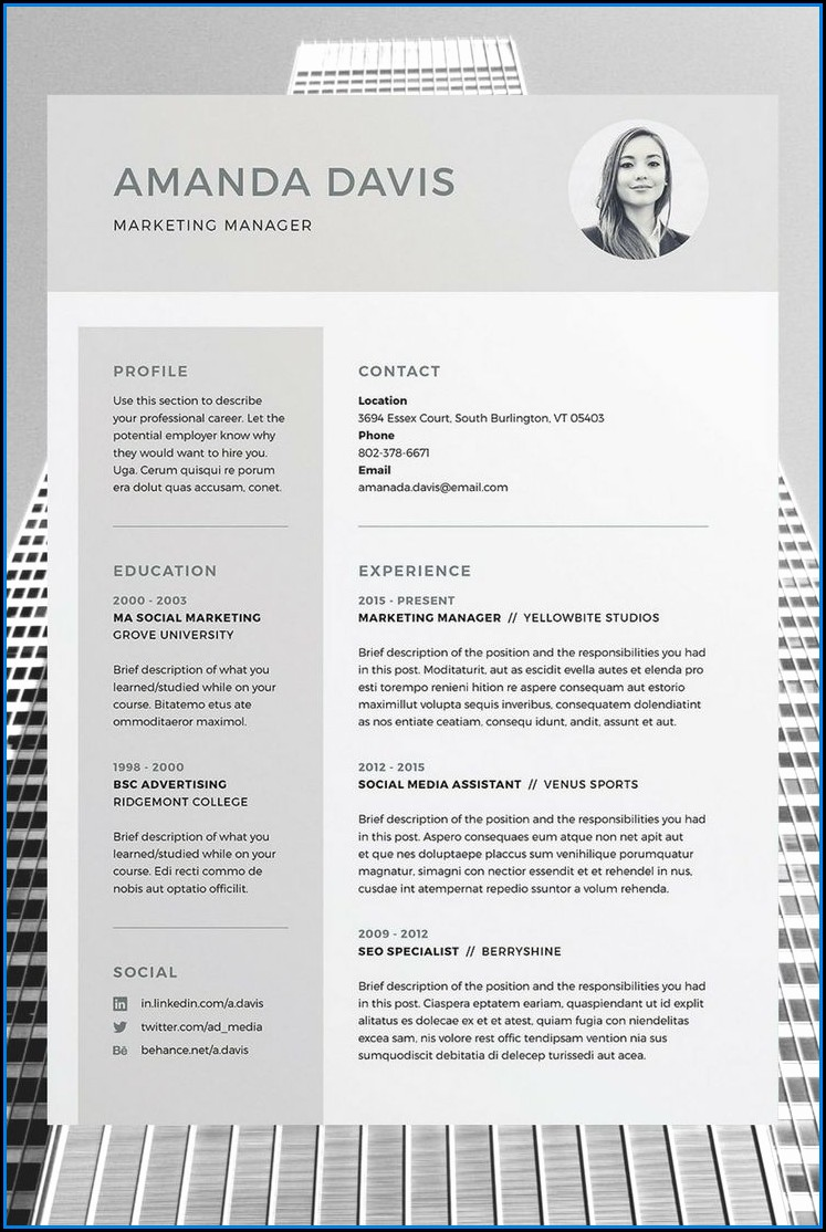 Fancy Resume Templates Word Free