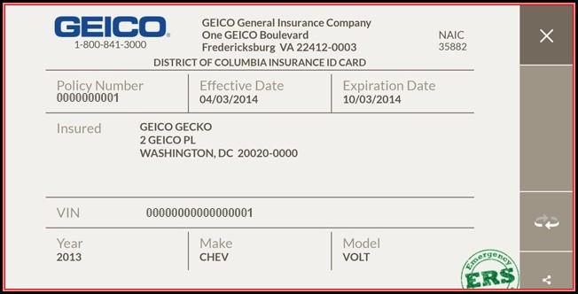 Fake Insurance Card Template