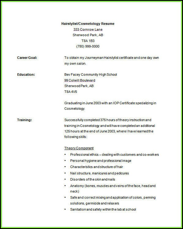 Free Hair Stylist Resume Templates Download