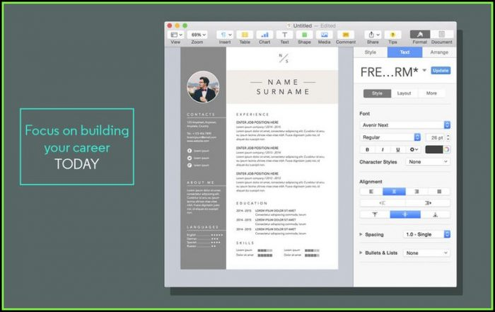 Free Resume Templates For Mac Pages