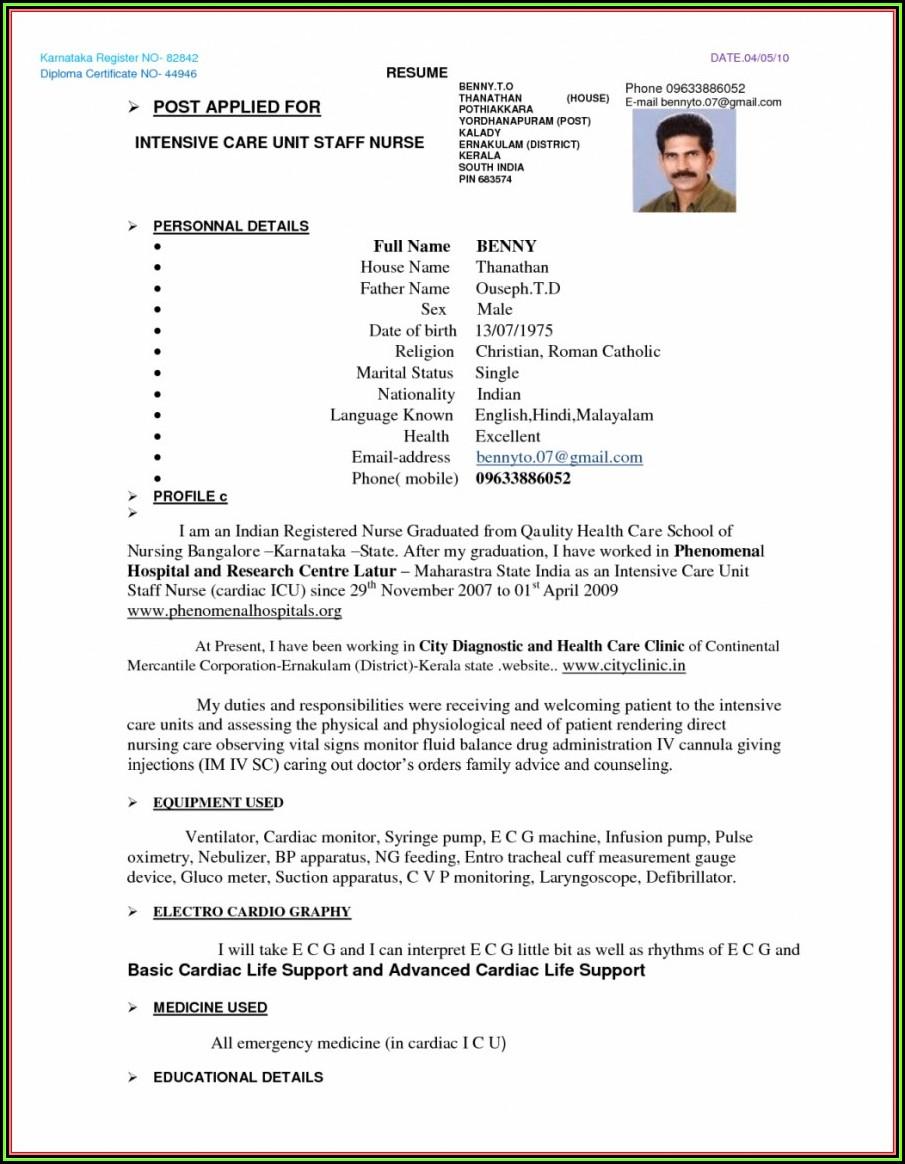 Gnm Nursing Resume Format For Freshers Pdf
