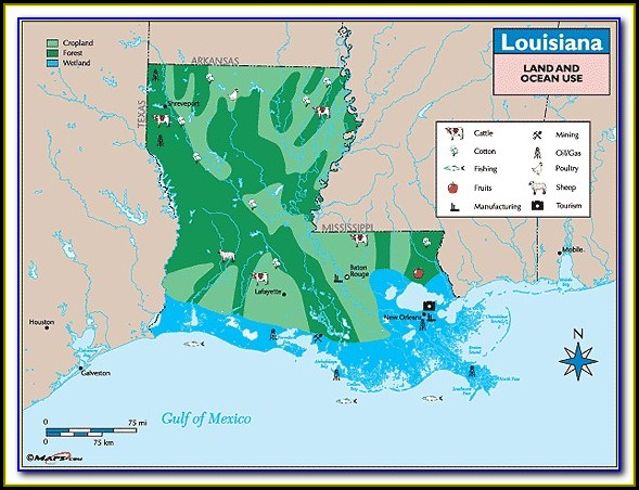 Louisiana Property Ownership Maps