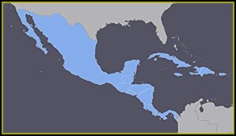 Mexico Gps Map For Garmin Devices