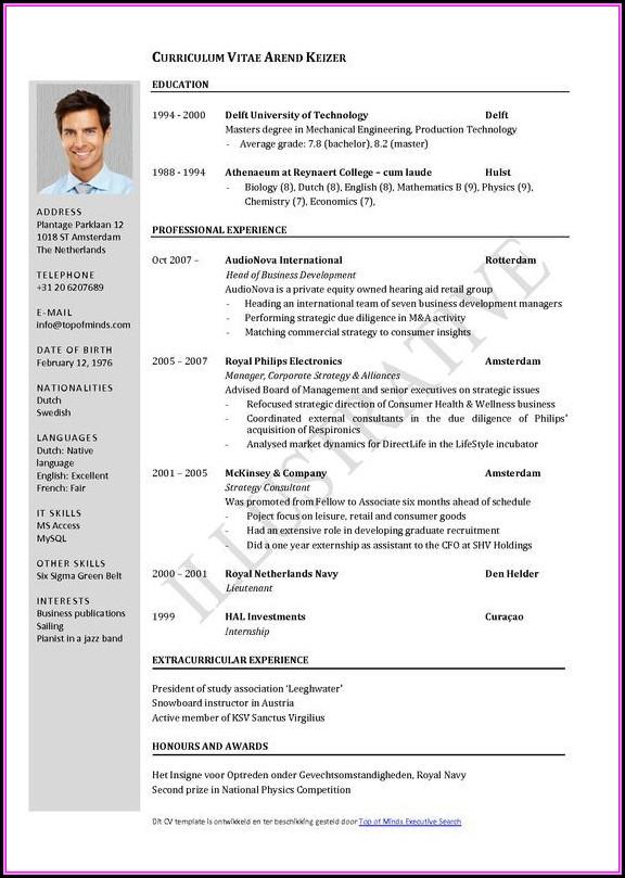 Job Resume Template Word Free