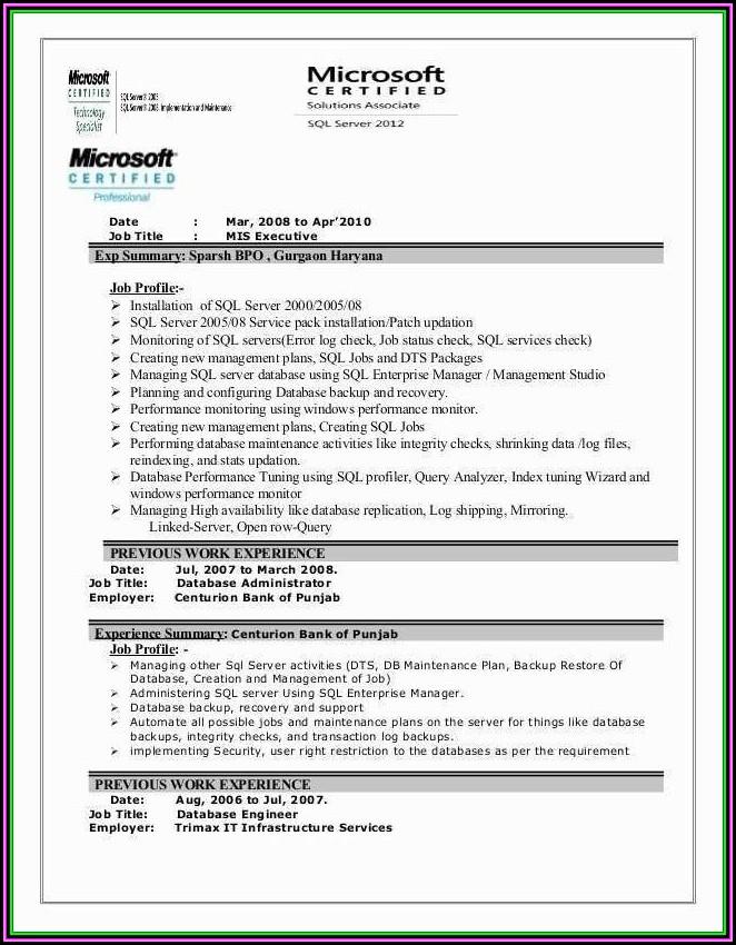 Mis Executive Cv Format