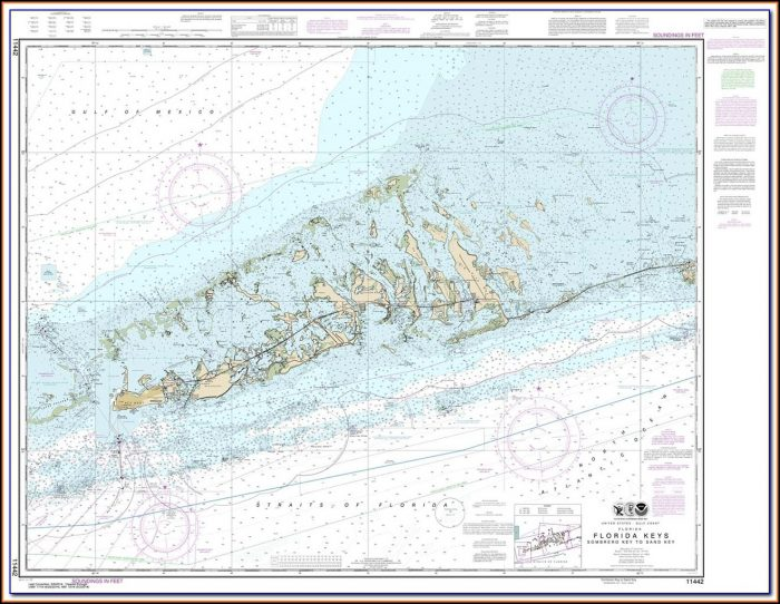 Nautical Map Florida Bahamas