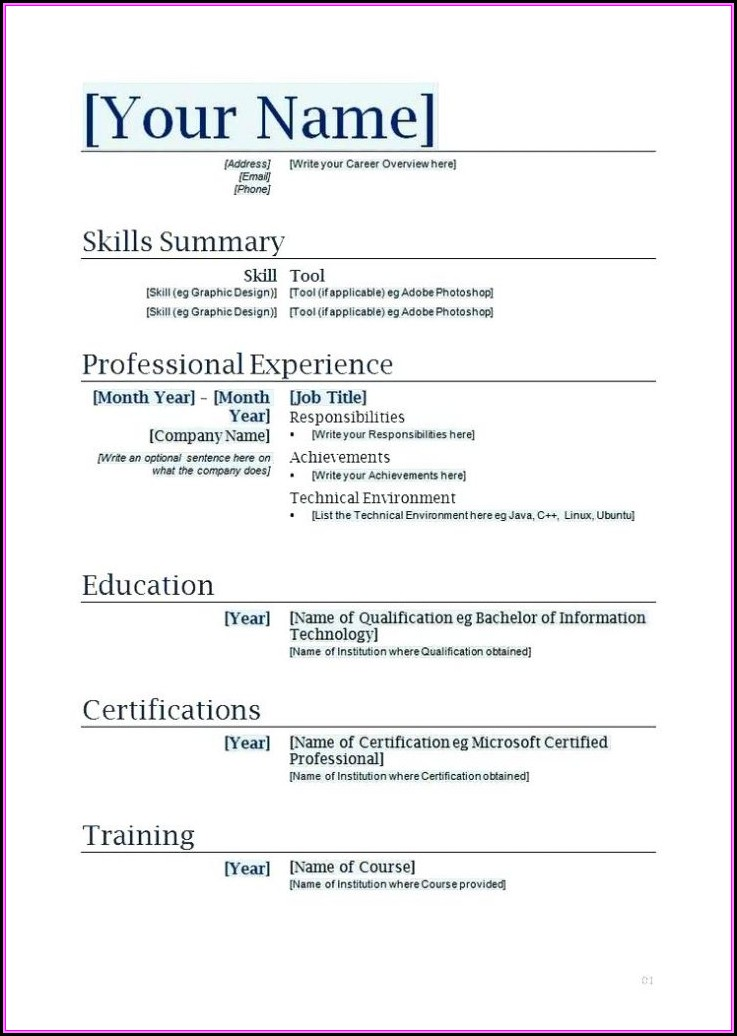 Professional Resume Template Microsoft Word 2010