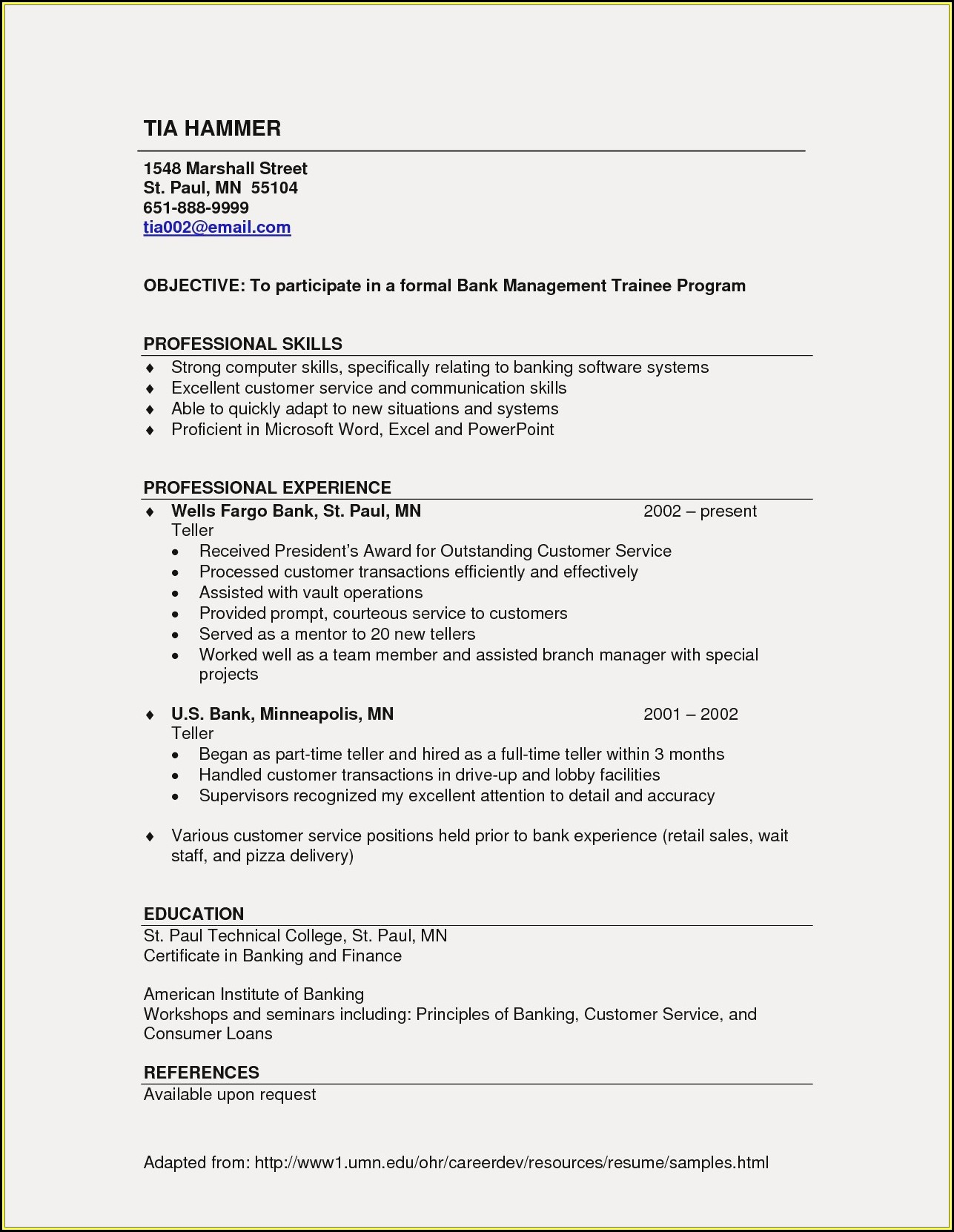 Resume Writing Services St Paul Mn