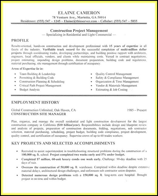 Resumes For Project Managers In Construction