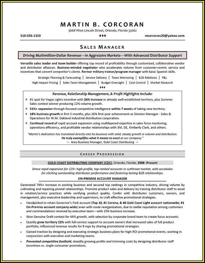 Sample Resumes Sales Director