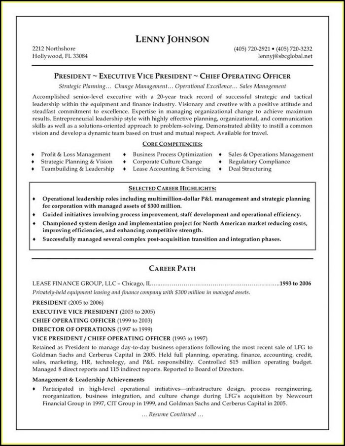 Senior Executive Resume Template Free