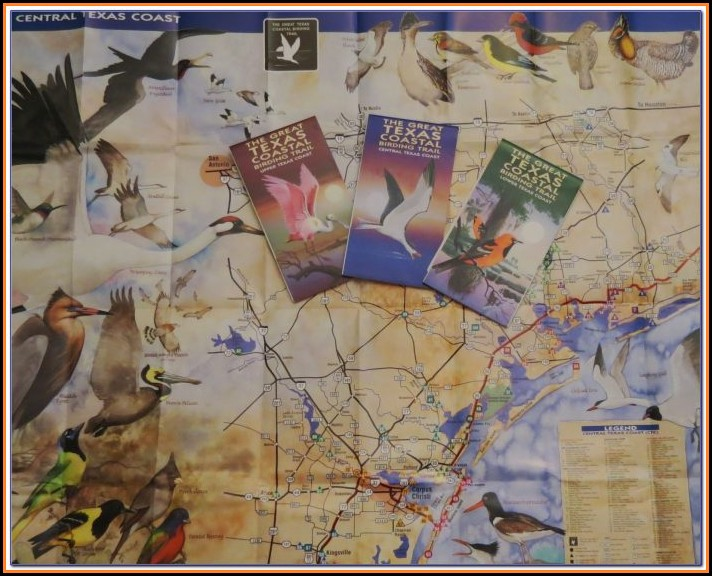 Texas Birding Trail Maps