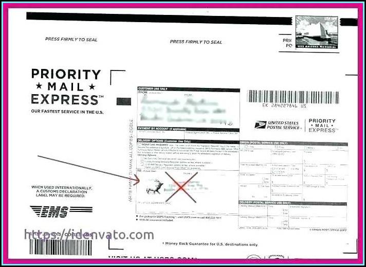 Free Return Address Label Templates Downloads