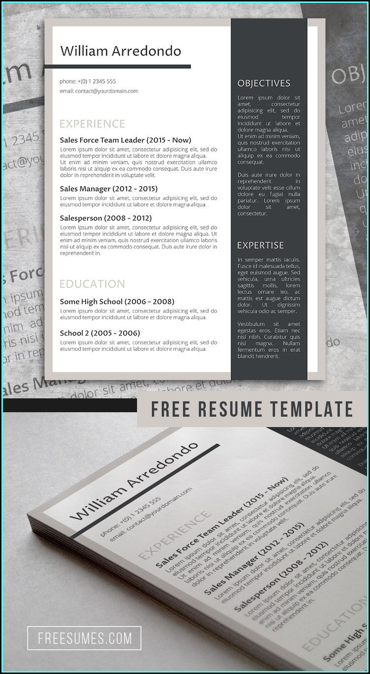 Free Stylish Resume Templates Docx