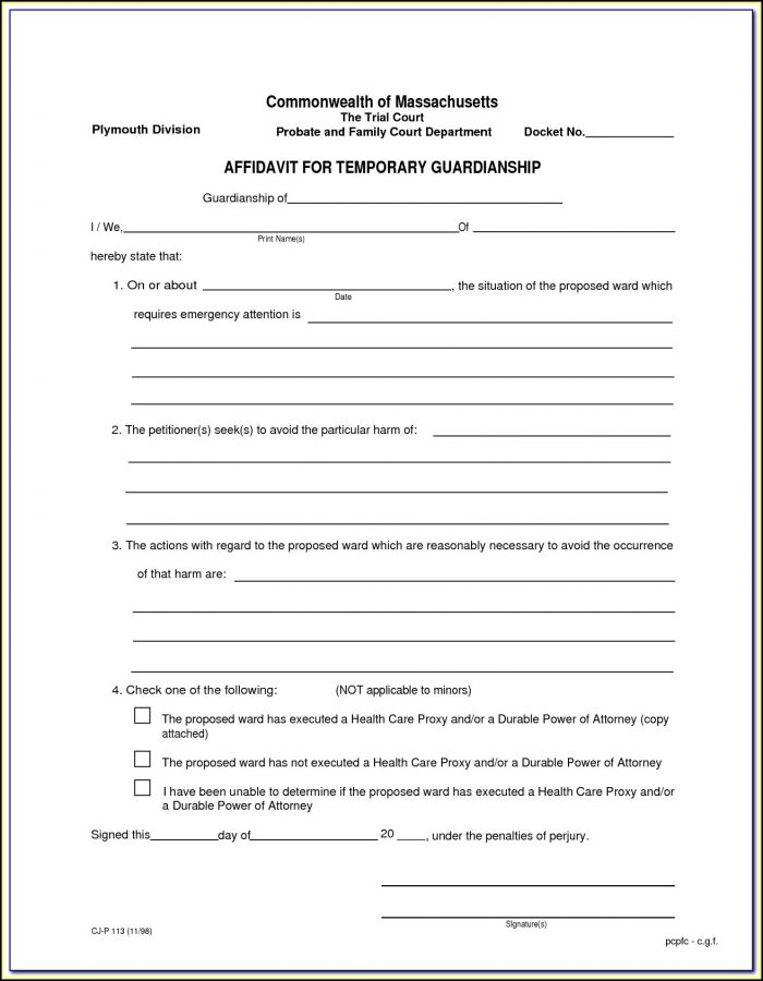 Temporary Child Custody Forms Texas