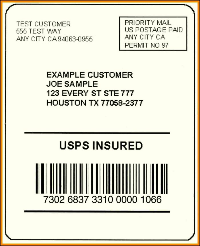Ups Shipping Label Template Free