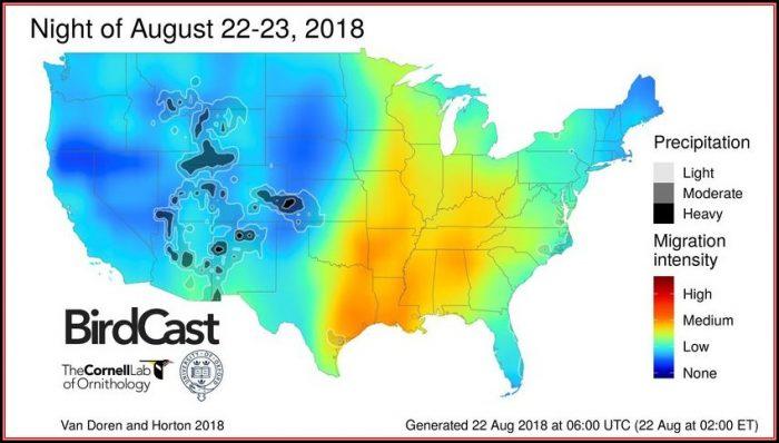 Bird Migration Map North America 2019