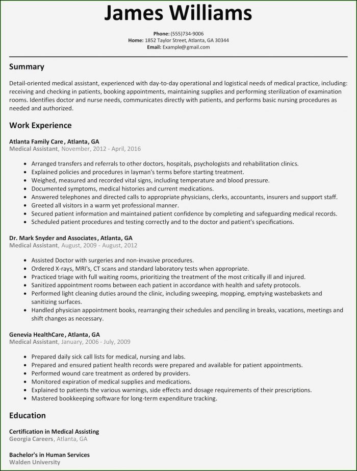 Free Resume Templates Macbook