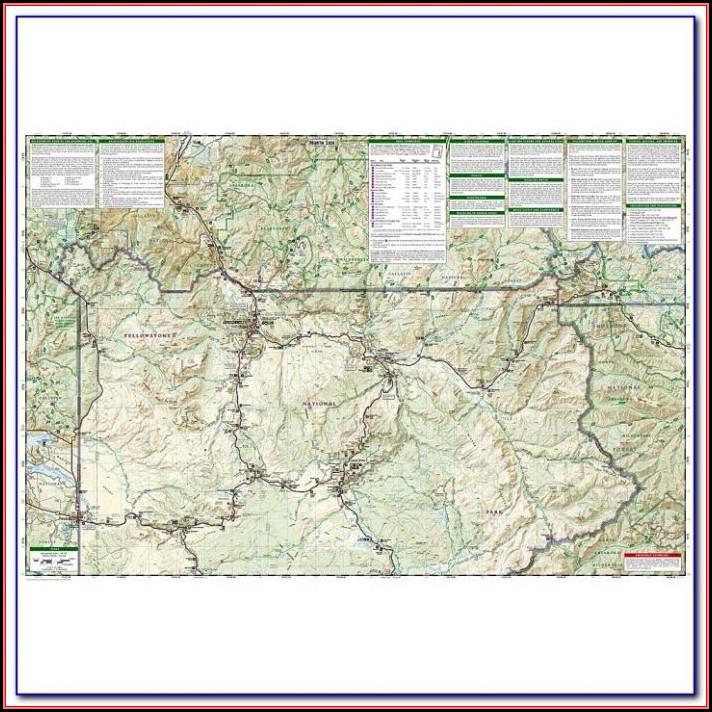 Illustrated World Map Anyong Lupa
